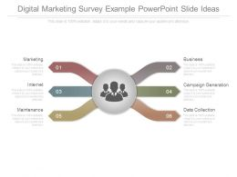 Digital Marketing Survey Example Powerpoint Slide Ideas