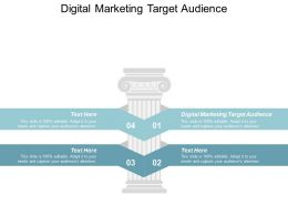 Digital Marketing Target Audience Ppt Powerpoint Presentation Pictures Smartart Cpb