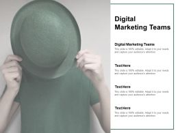 Digital Marketing Teams Ppt Powerpoint Presentation Icon Guidelines Cpb