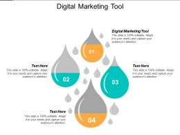 Digital Marketing Tool Ppt Powerpoint Presentation Slides Summary Cpb