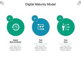Digital Maturity Model Ppt Powerpoint Presentation Portfolio Templates Cpb
