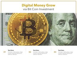 Digital Money Grow Via Bit Coin Investment