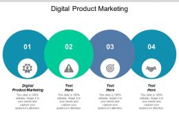Digital Product Marketing Ppt Powerpoint Presentation Icon Format Ideas Cpb