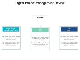 Digital Project Management Review Ppt Powerpoint Presentation Layouts Icons Cpb