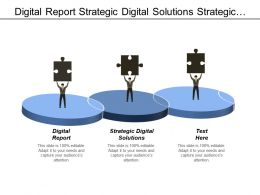 Digital Report Strategic Digital Solutions Strategic Portfolio Management Cpb