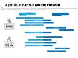 Digital Sales Half Year Strategy Roadmap