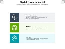 Digital Sales Industrial Ppt Powerpoint Presentation Infographic Template Backgrounds Cpb