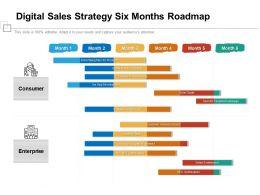 Digital Sales Strategy Six Months Roadmap