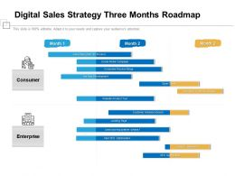 Digital Sales Strategy Three Months Roadmap