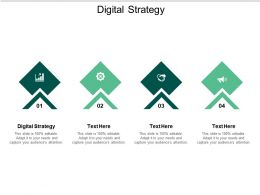Digital Strategy Ppt Powerpoint Presentation Slides Graphics Example Cpb