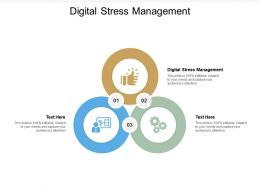 Digital Stress Management Ppt Powerpoint Presentation Graphics Cpb