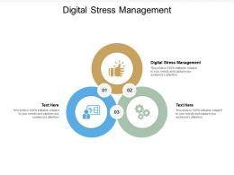 Digital Stress Management Ppt Powerpoint Presentation Graphics Cpb