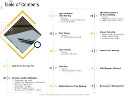 Digital Trade Advertisement Table Of Contents Ppt Powerpoint Visual Aids Files