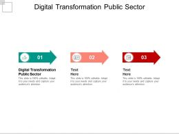 Digital Transformation Public Sector Ppt Powerpoint Presentation Infographics Icon Cpb