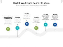 Digital Workplace Team Structure Ppt Powerpoint Presentation Professional Information Cpb