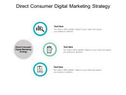 Direct Consumer Digital Marketing Strategy Ppt Powerpoint Presentation File Cpb