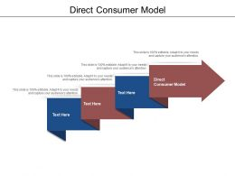 Direct Consumer Model Ppt Powerpoint Presentation Professional Vector Cpb