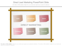 Direct Lead Marketing Powerpoint Slide
