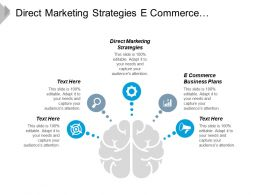 Direct Marketing Strategies E Commerce Business Plans Business Organisations Cpb