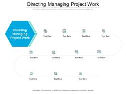 Directing Managing Project Work Ppt Powerpoint Presentation Ideas Structure Cpb