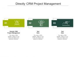 Directly CRM Project Management Ppt Powerpoint Presentation Model Portfolio Cpb
