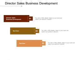 Director Sales Business Development Ppt Powerpoint Presentation Gallery Images Cpb