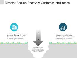 Disaster Backup Recovery Customer Intelligence Sustainable Corporate Culture Cpb