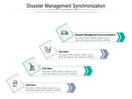 Disaster Management Synchronization Ppt Powerpoint Presentation File Skills Cpb