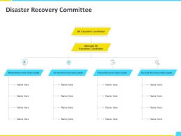Disaster Recovery Committee Alternate Ppt Powerpoint Presentation File Designs