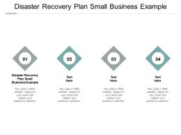 Disaster Recovery Plan Small Business Example Ppt Powerpoint Presentation Portfolio Pictures Cpb