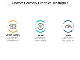 Disaster Recovery Principles Techniques Ppt Powerpoint Presentation Example Cpb