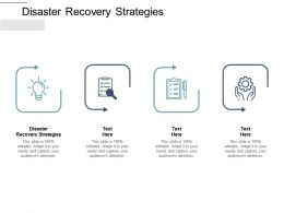 Disaster Recovery Strategies Ppt Powerpoint Presentation Graphics Cpb