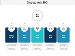 Display Ads ROI Ppt Powerpoint Presentation Summary Elements Cpb