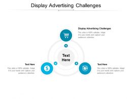 Display Advertising Challenges Ppt Powerpoint Presentation Images Cpb