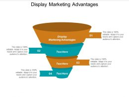 Display Marketing Advantages Ppt Powerpoint Presentation File Smartart Cpb