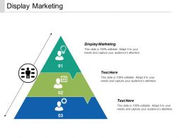 Display Marketing Ppt Powerpoint Presentation Summary Layouts Cpb