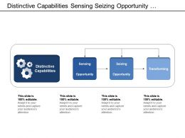 Distinctive Capabilities Sensing Seizing Opportunity Transforming