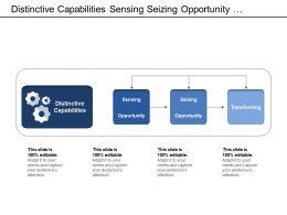 Distinctive Capabilities Sensing Seizing Opportunity Transforming