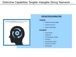 Distinctive Capabilities Tangible Intangible Strong Teamwork Table