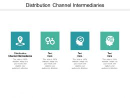 Distribution Channel Intermediaries Ppt Powerpoint Presentation Summary Graphics Cpb