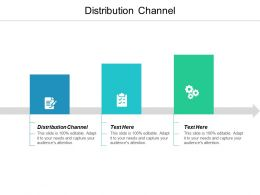 Distribution Channel Ppt Powerpoint Presentation Infographic Template Infographics Cpb