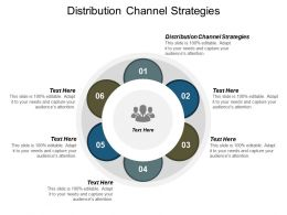 Distribution Channel Strategies Ppt Powerpoint Presentation Ideas Grid Cpb