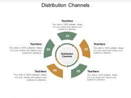 Distribution Channels Ppt Powerpoint Presentation Portfolio Smartart Cpb