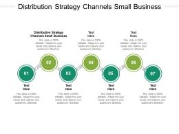 Distribution Strategy Channels Small Business Ppt Powerpoint Presentation Slides Cpb