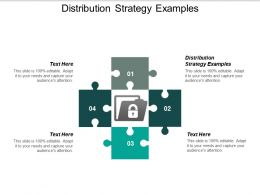 Distribution Strategy Examples Ppt Powerpoint Presentation Pictures File Formats Cpb
