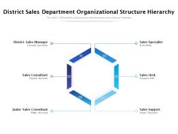District Sales Department Organizational Structure Hierarchy