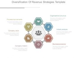 Diversification Of Revenue Strategies Template