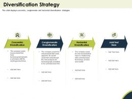 Diversification Strategy Company Seeks Ppt Powerpoint Presentation Gallery Grid