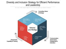 Diversity And Inclusion Strategy For Efficient Performance And Leadership