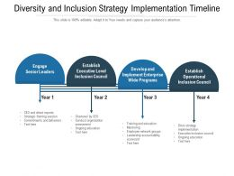 Diversity And Inclusion Strategy Implementation Timeline